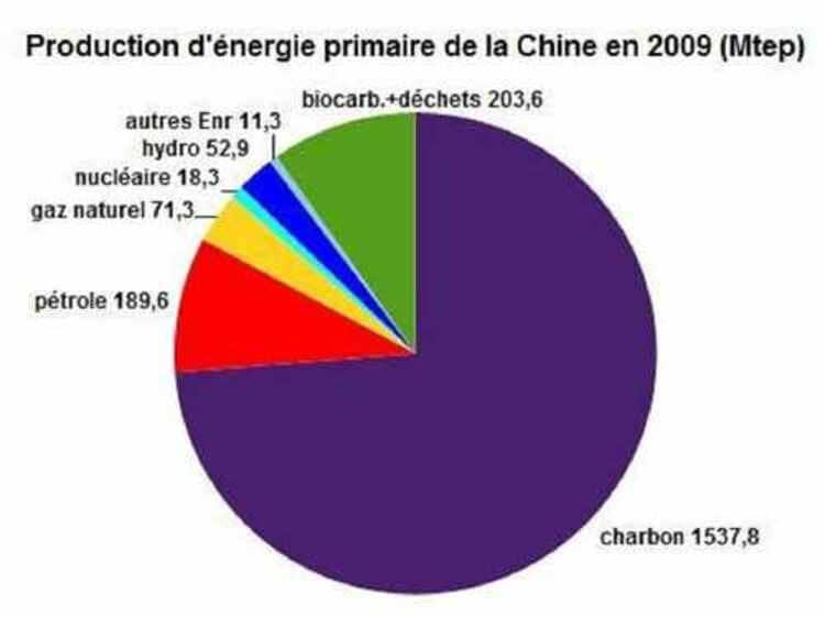 La répartition de la production d'énergie primaire en R.P.C. l'année 2009